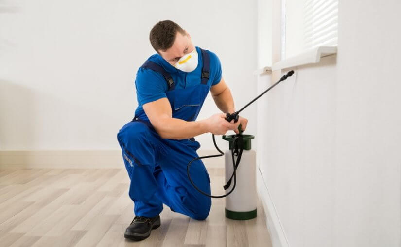Inspect It First - Home Inspection Checklist Property Inspections